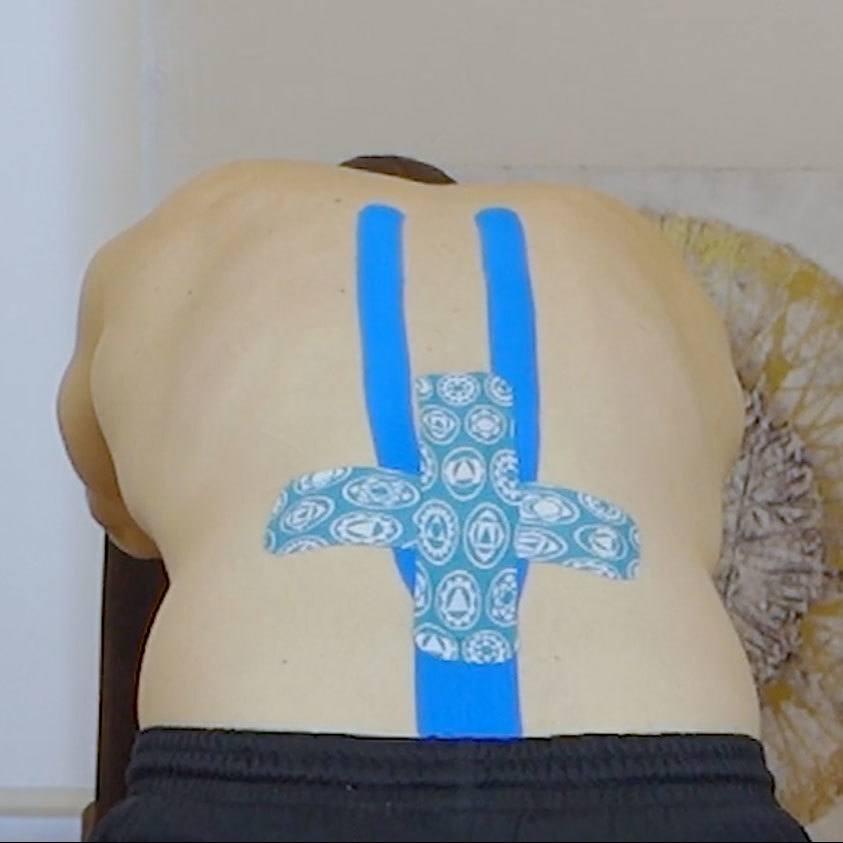 Tapeanlage-Rücken