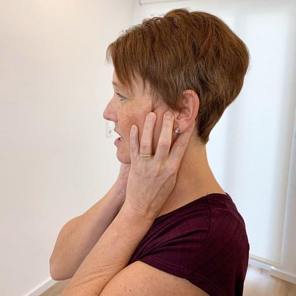 Tinnitus Schmerz behandeln