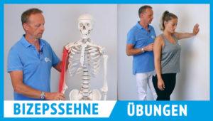 Ein Mann zeigt Übungen für eine Bizepssehnenentzündung