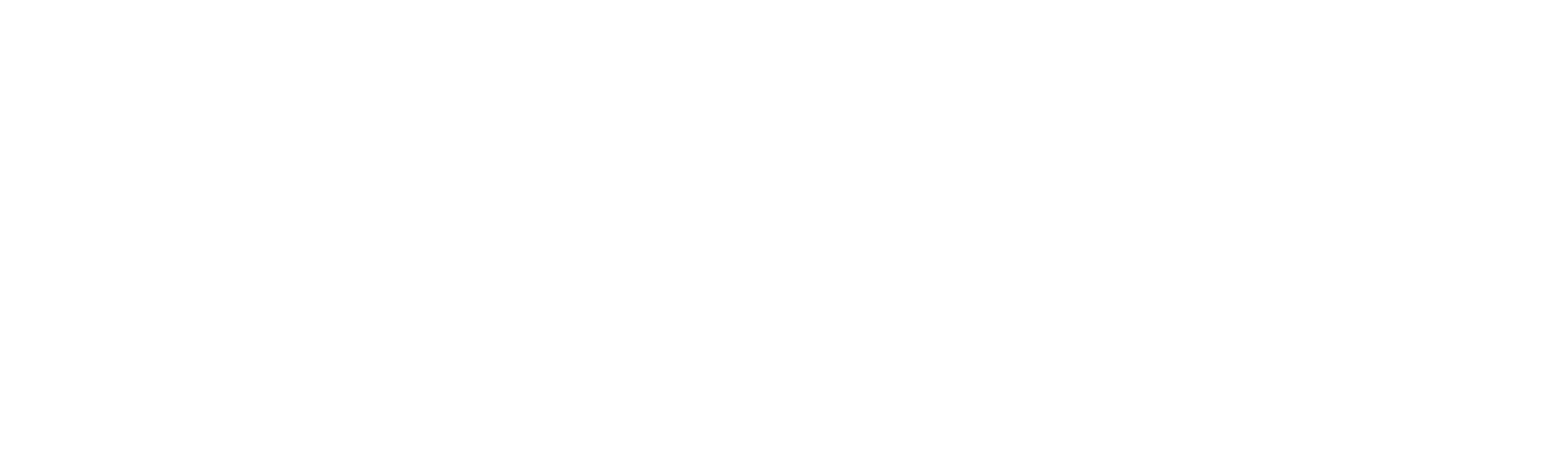 logo FULL inverted